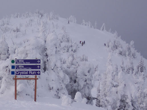 Sun Peaks Resort - what it's like at the top!