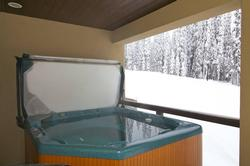 Hot tub can be accessed from master bedroom or the main deck door off the dining room.
