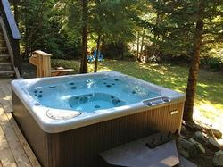 Sparkling Hot Tub in Secluded Backyard.
