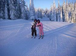This picture was taken in December on Sticks one of the green runs at Sun Peaks. Lots of great snow!