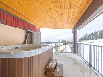 Your own private Hot Tub on the rear deck.