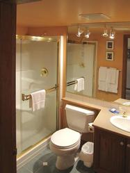 DOUBLE SHOWER BATHROOM