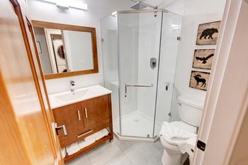 2nd hallway bathroom with stand up Rain shower and heated floors