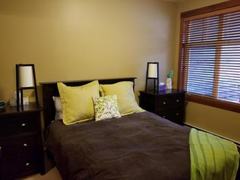 Master bedroom  -Queen bed with cozy duvet and two dressers