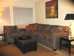 New furniture and queen sleeper sofa overlooking your private patio and manicured gardens!
