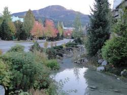 The Stoney Creek in front of our complex in autumn.