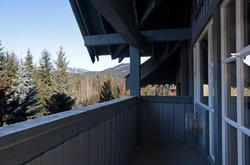 Enjoy the forest and mountain view from our large private deck.