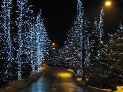 Whistler lights create a magical place in winter