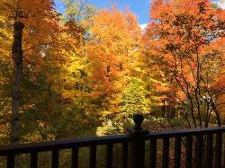 View from deck in fall