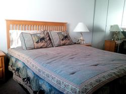 Large Master bedroom with Queen bed and large storage unit.