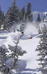 BIG RED CAT Powder Cat- Skiing with a van that leaves next door... HEAVEN!!!