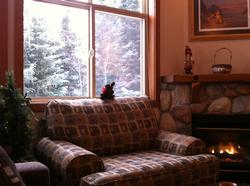 Welcome to our cozy living room with new furniture.
