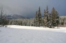 Chateau Whistler Golf Course... cross-country trails and sleigh rides just a few steps outside your door.