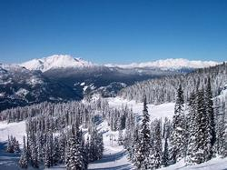 WINTER at WHISTLER