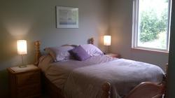Master Bedroom - Queen Bed with large dresser and closet