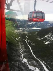 The Peak to Peak Gondola takes you from the top of Whistler to the top of Blackcomb mountain - all included in the cost of your day pass - an incredible ride... keep an eye out for the glass bottoms...if you can handle it !!