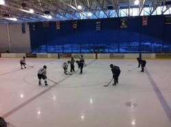Take in a Rep Ice Hockey game at Meadow Park, or better still head to Vancouver to watch the big league play...