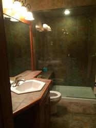 Guest bathroom downstairs with steam shower and heated floors