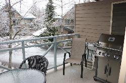 Large deck beside dining room with Napoleon BBQ