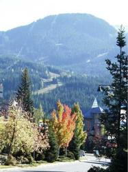 Whistler in the fall