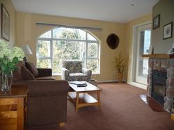 A bright sunny space with great mountain and forest views from the living area and bedroom.