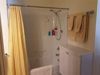 Tub and shower with complimentary shampoo and body wash