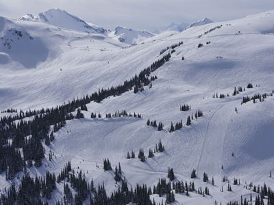 Whistler Blackcomb in Winter